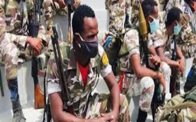 Éthiopie: le gouvernement fédéral conquiert une nouvelle ville au Tigré