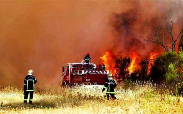 44 blessés et d'importants dégâts matériels dans les incendies de Beni Amrane et Tidjelabine à Boumerdès